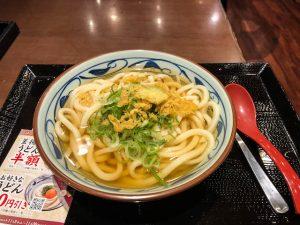 Udon Nudeln auf Teller als Gericht in japan