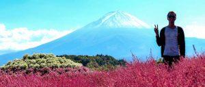 Person steht vor dem Fuji Vulkan Japan mit roten Blumen davor