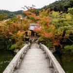 Kyoto Japan: 35 Sehenswürdigkeiten (+ wichtige Reisetipps und Infos!)