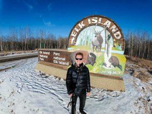 Eingangsschild zum Elk Island Park