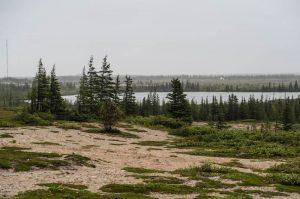 Landschaft im Norden Manitobas