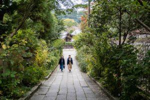 Weg mit zwei Menschen durch grüne Natur