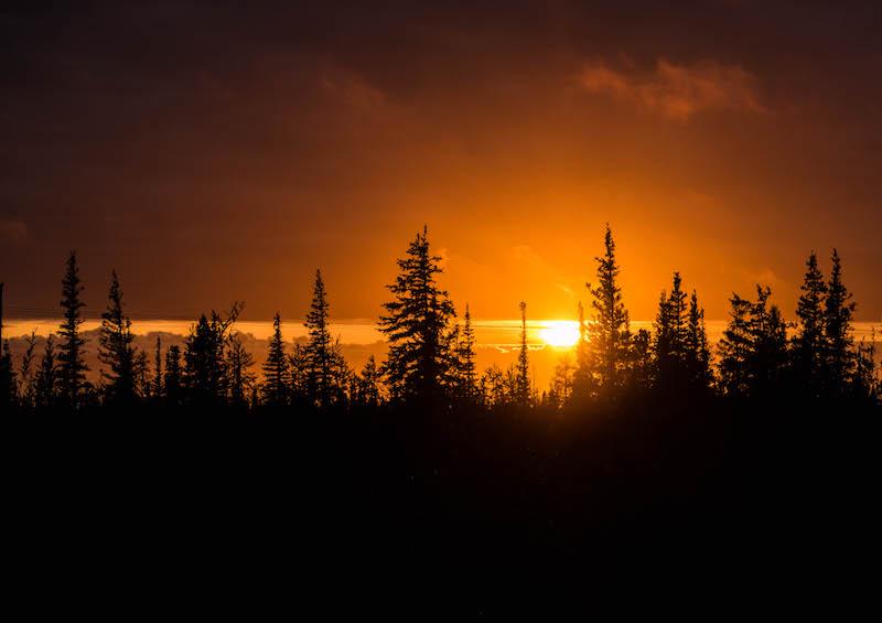 Sonnenuntergang vor Wald in Manitoba Kanada