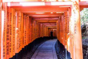 Orangene Torii Tore am Fushini Inari Schrein Kyoto