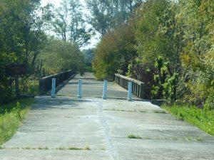 Brücke im Gebüsch und Wald