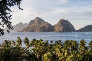 Blick auf Inseln in Meer und Palmen