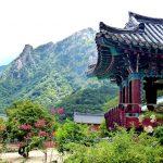 Südkorea Reisetipps: Alle wichtigen Infos zu deinem Urlaub!