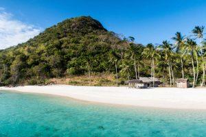 Insel mit Strand und Palmen