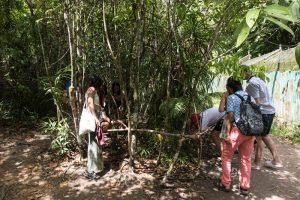 Gruppe von Menschen vor Baum