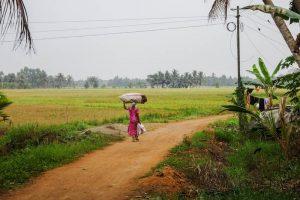 Frau läuft durch Felder
