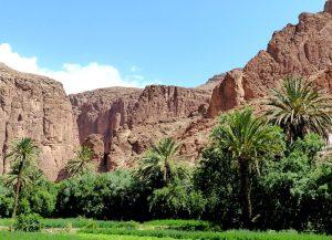 Felswände und grüne Bäume in Marokko