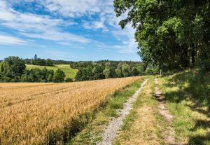 Wanderweg durch Felder bei Ellwangen