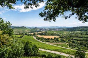Aussicht Lemppruhe Heilbronn
