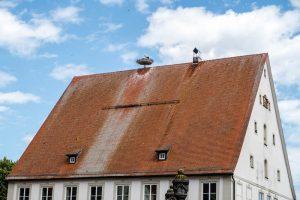 Storchennest auf rotem Dach
