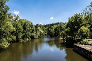Bäume entlang des Flusses