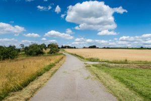 Straße durch Felder