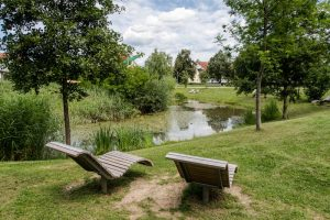 Stadtpark Schorndorf Stuttgart mit See und Liegen