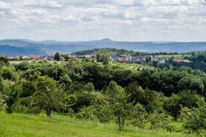 Streuobstwiesen im Remstal Schorndorf