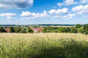 Felder und Häuser in Wackershofen