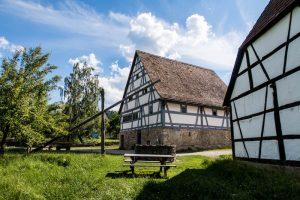 Häuser mit grüner Wiese