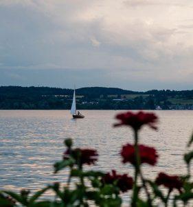Blumen und Segelboot im See